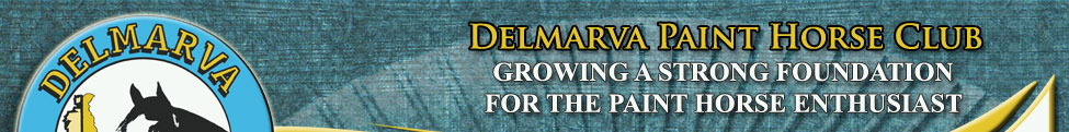 Delmarva Paint Horse Club